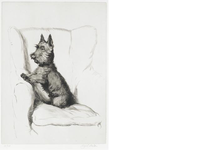 Cecil Charles Windsor Aldin, RBA (British, 1870-1935) A Scottish Terrier in an armchair 11 3/4 x 8 5/8 in. (30 x 22 cm.)