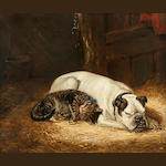 Ralph Hedley (British, 1848-1913) English Bulldog and cat at rest in a stable 20 x 24 in. (50.8 x 61 cm.)