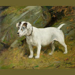 George Wright (British, 1860-1942) The Terrier 'Jock' 10 x 12 in. (25 .4 x 30.5 cm.)