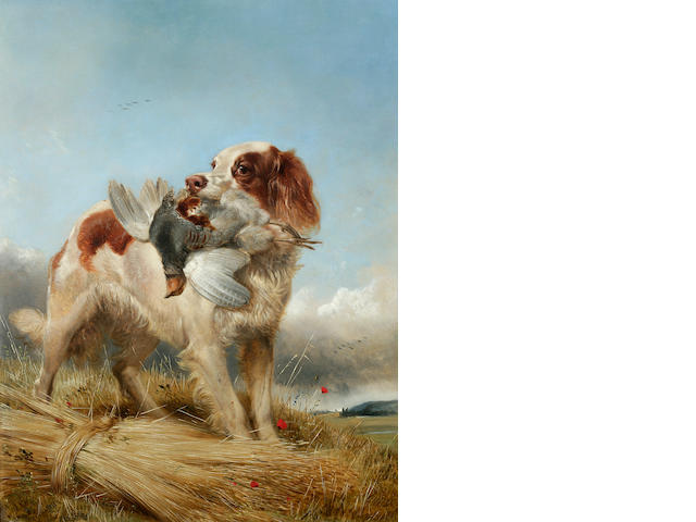 Richard Ansdell, RA (British, 1815-1885) English Setter Retrieving Partridge, 1862 23 7/8 x 18 3/8 in. (60.6 x 46.6 cm.)