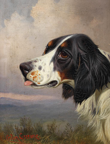 Colin Graeme (British, 1858-1910) A head of a Setter in a landscape