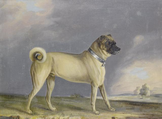 Henry Bernard Chalon (British, 1770-1849) A favorite Pug bitch, 1802; A Pug dog 20 1/8 x 23 5/8 in. (51 x 60 cm.)