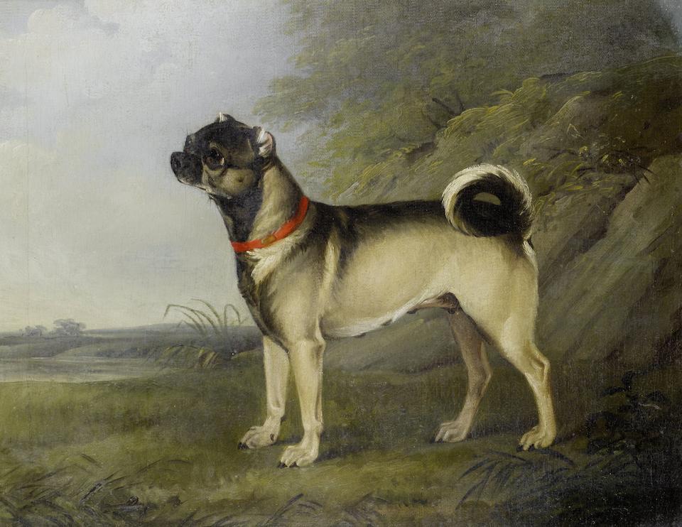 Henry Bernard Chalon (British, 1770-1849) A favourite Pug bitch; A Pug dog, a pair (2)