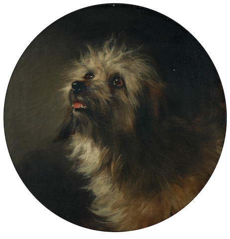 George Earl (British, 1824-1908) Portrait of a Terrier