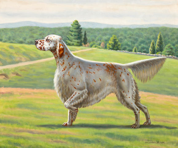 Charles Liedl (American) English Setter 20 x 24 in. (50.8 x 51 cm.)