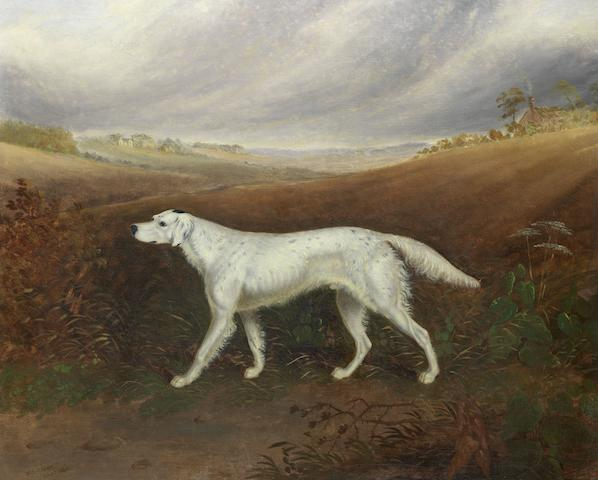 W.J. Gilbert (British, mid 19th Century) English setter in an extensive parkland setting