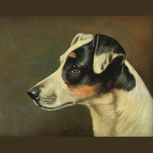 John Arnold Wheeler (British, 1821-1903) Head studies of Terriers each 7 1/16 x 8 7/8in.(18 x 22.5cm.)