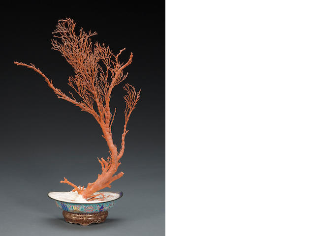 A Canton-enameled bowl with large coral branch Late Qing dynasty