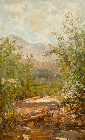 Thomas Hill (American, 1829-1908) Mount Tamalpais through the trees 22 x 14in