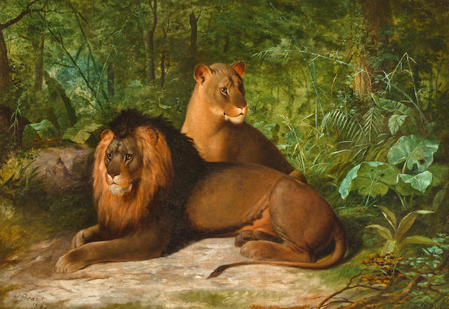James Henry Beard (American, 1812-1893) Lion and Lioness 25 x 36in