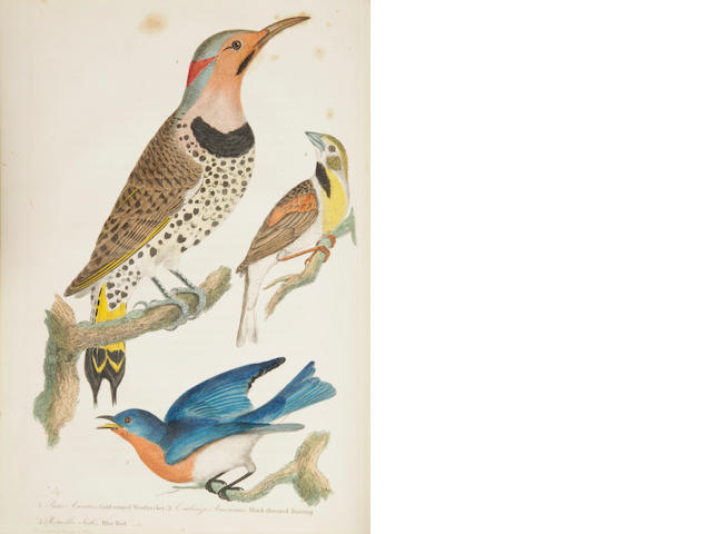 WILSON, ALEXANDER.  American Ornithology.  Phila: 1808-1814.  9 vols.  mixed bindings.