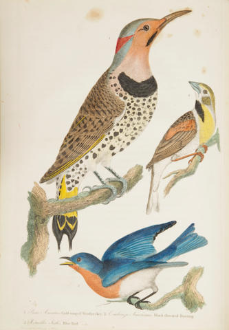 WILSON, ALEXANDER.  American Ornithology.  Phila: 1808-1814.  9 vols.  mixed bindings.