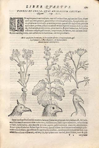 PORTA, GIOVANNI BATTISTA DELLA. 1538-1615. Phytognomonica. Naples: Horatio Salviano, 1588.