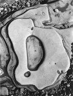 Brett Weston (American, 1911-1993); Eroded Rock, Point Lobos;