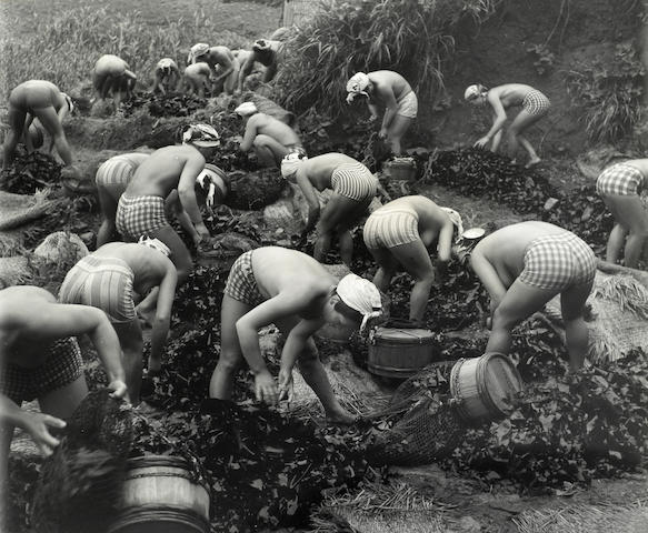 Iwase Yoshijuki (Japanese, 1904-2001); Seaweed Harvest (YIWA 0043) ;