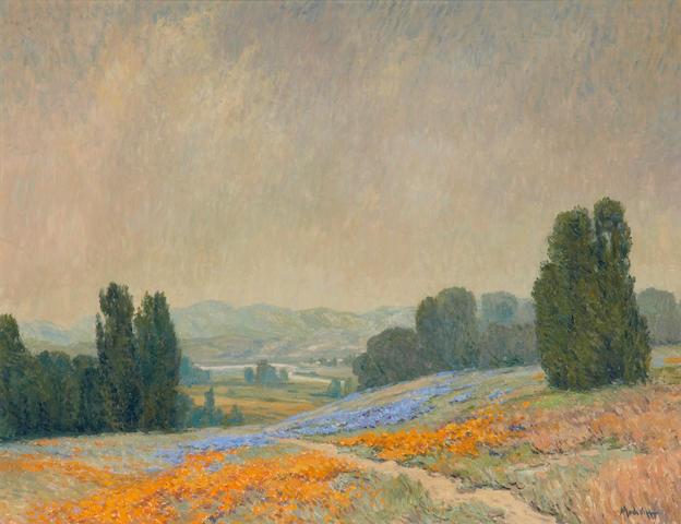 John Modesitt, Wildflowers, Marin County, 28 x 36 inches, oil on canvas
