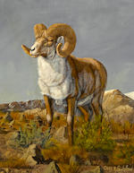 Gary R. Swanson (American, born 1941) Snow sheep; Tibetan Argali; Tin Shan Argali (group of three paintings) each 10 1/4 x 8in