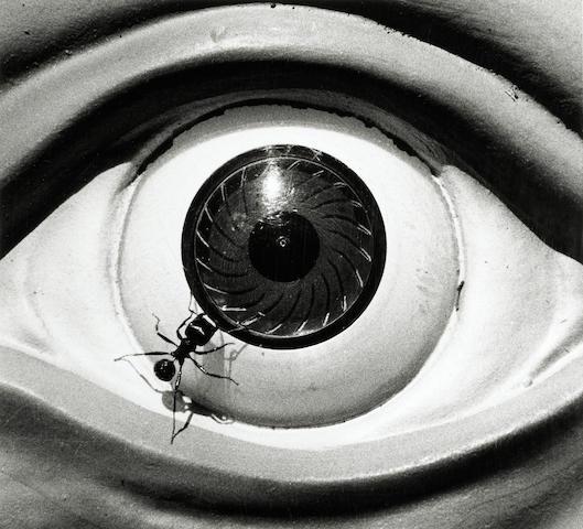 David Wojnarowicz (American, 1954-1992); Untitled (Ant and Eye);