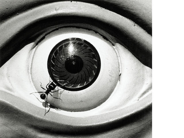 David Wojnarowicz (American, 1954-1992); Untitled (Ant and Eye);