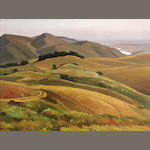 Ray Strong, Marin hills, oil
