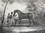 After Antoine Charles Horace Vernet; Selected Equestrian Images; (4)