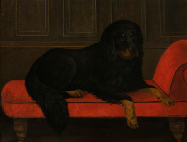 Continental School A portrait of a Bernese Mountain Dog 34 x 44in