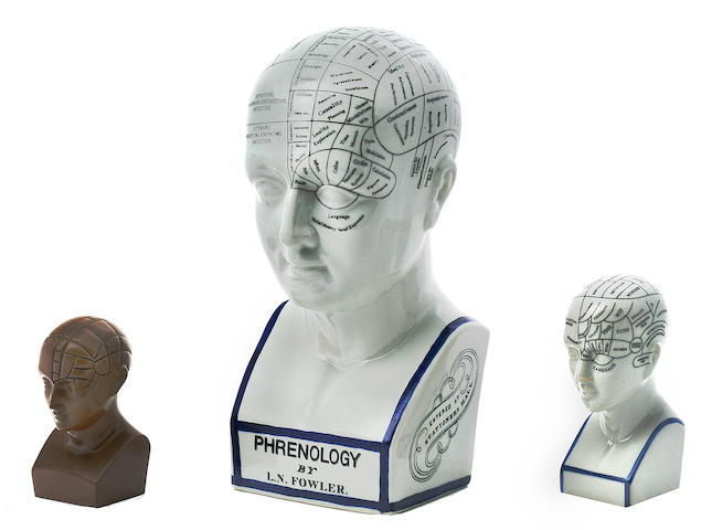 A group of Phrenology Heads  12 in. (30.4 cm.) height of the largest. 4