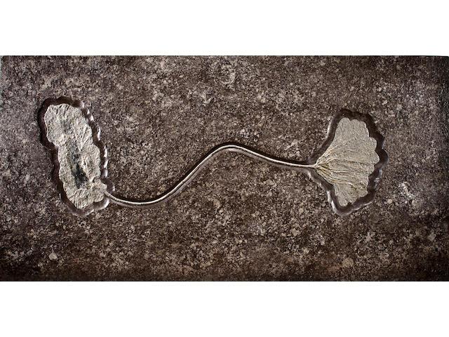Holzmaden crinoid