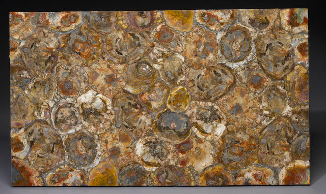 Petrified Wood Tabletop