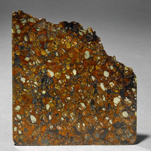 Jepara Pallasite Section