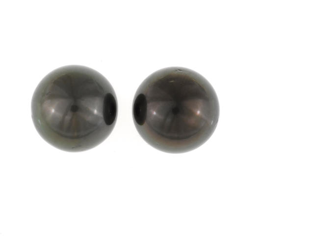 A pair of colored South Sea cultured pearl earrings