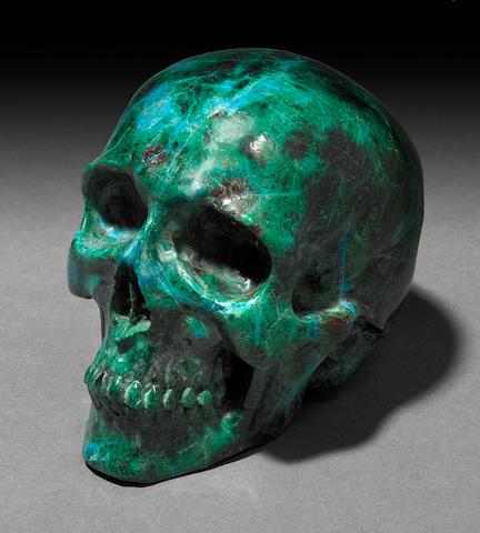 Peruvian Chryseilla Skull