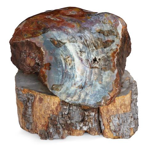 Large Petrified Wood Sculptural Specimen on Base