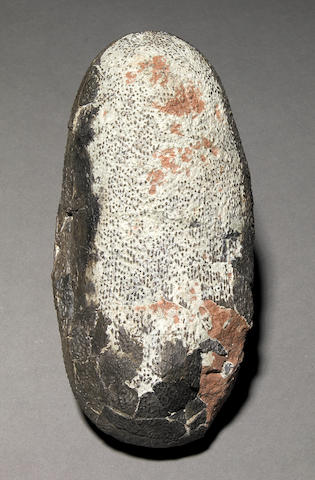 Single Oviraptorid Egg