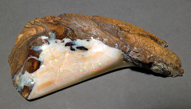 Boulder of Opal Specimen