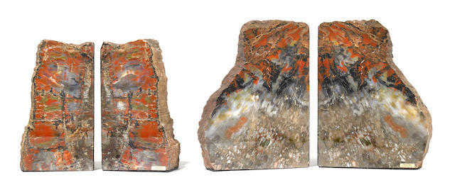 Two Pairs of Petrified Wood Bookends