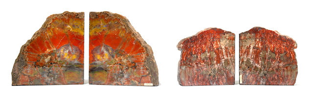 2 Pair of Petrified Wood Bookends