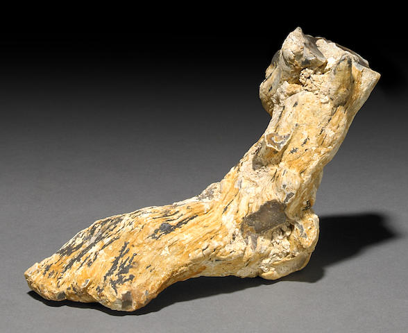 The Foot - Uniquely Shaped Agate Specimen