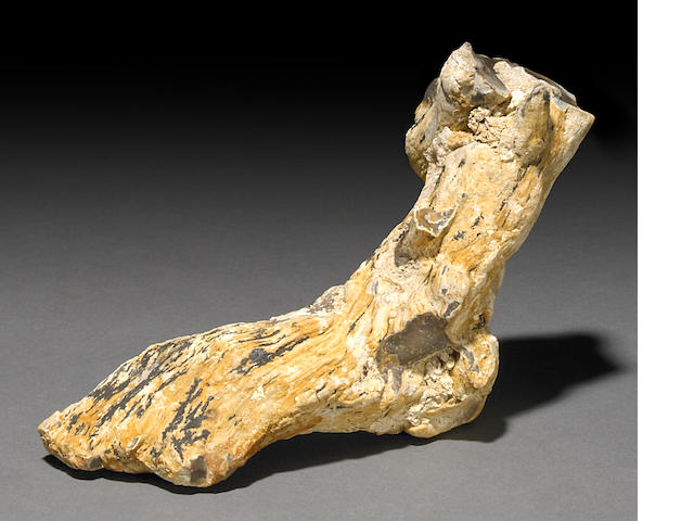 Zoomorphic Foot in Agate