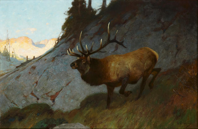 Carl Clemens Moritz Rungius (American, 1869-1959) Olympian Elk 30 x 46 1/4in