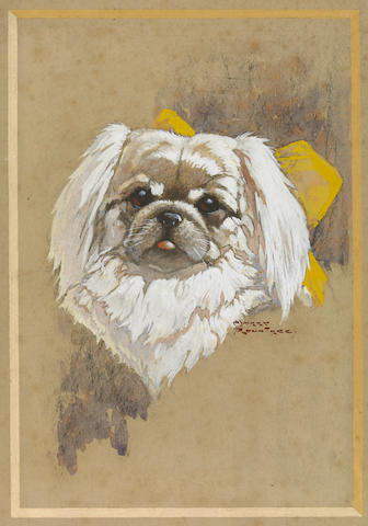 ROUNTREE, HARRY. 1878-1950. Portrait of a Dog.