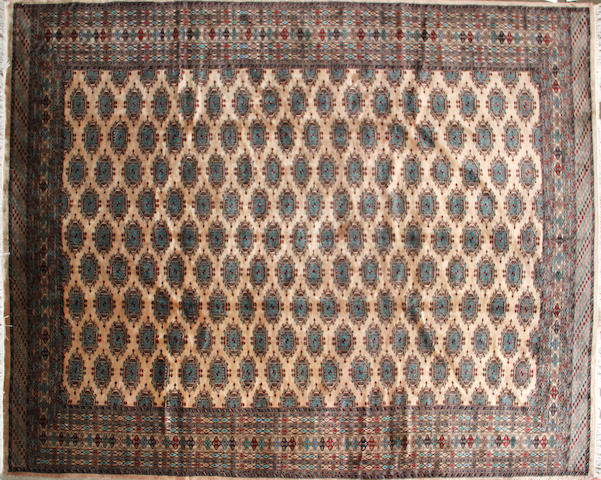 A Tekke carpet Turkestan, size approximately 8ft. 2in. x 10ft.