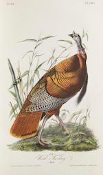 AUDUBON, JOHN JAMES. Birds of America. NY: 1840. First Octavo edition. 7 vols.