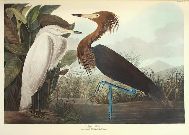 AUDUBON, JOHN JAMES. 1785-1851. The Birds of America: A Selection of Landscape Plates Facsimile Volume Two. London: Ariel Press/Minnesota: Voyageur Press, [1973].