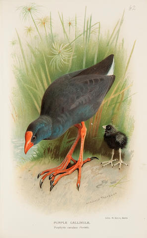 LILFORD, THOMAS L. 1801-1861. Coloured Figures of the Birds of the British Islands. London: 1891-97.