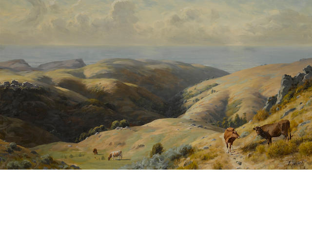 Thaddeus Welch (American, 1844-1919) Cattle grazing in Marin County 20 1/4 x 36in