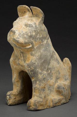 A lead glazed model of a dog Han dynasty