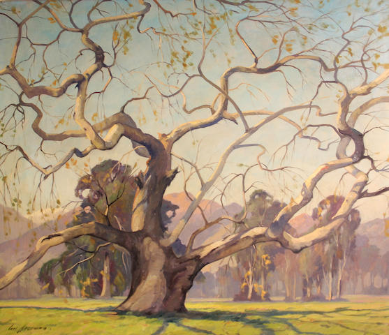 Carl Hoerman (American, 1885-1955) California sycamore 28 x 31in