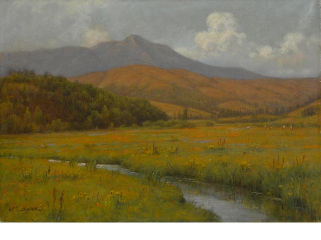 William Barr (British/American, 1867-1933) Wildflowers along a stream beneath Mount Tamalpais 16 x 23in unframed