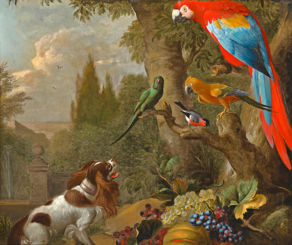 Attributed to Jakob Bogdani (Eperjes 1660-1724 Finchley) A still life with fruit, parrots, cockatoo and spaniel 36 x 42 1/2in (91.5 x 108cm)